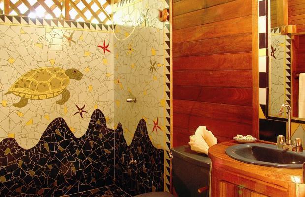 фотографии отеля Cariblue Beach and Jungle Resort изображение №11
