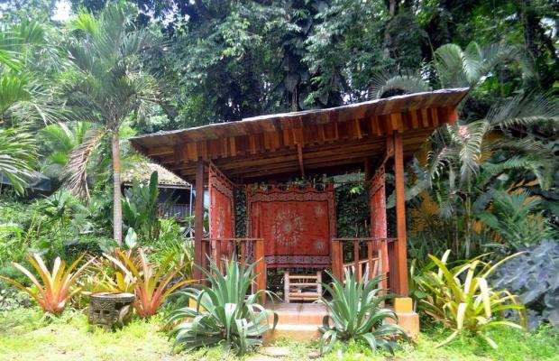 фото отеля Cariblue Beach and Jungle Resort изображение №9