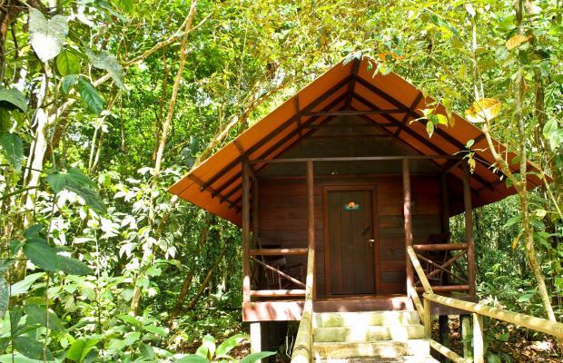 фото Evergreen lodge изображение №58