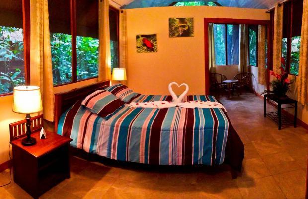 фотографии Evergreen lodge изображение №52