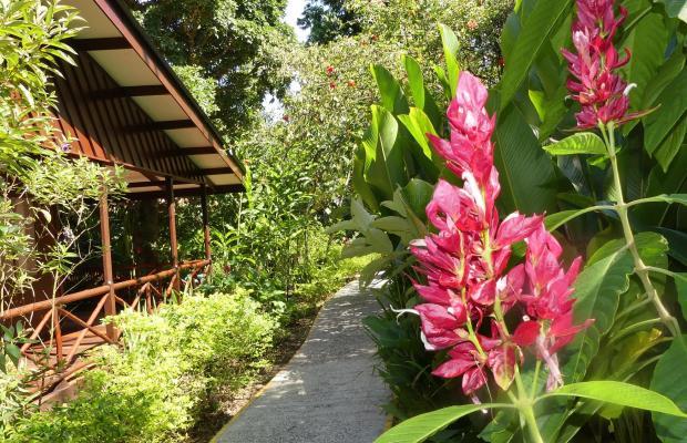 фотографии отеля Evergreen lodge изображение №11