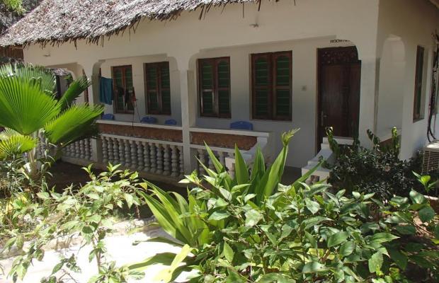фотографии отеля The Nungwi Inn изображение №15