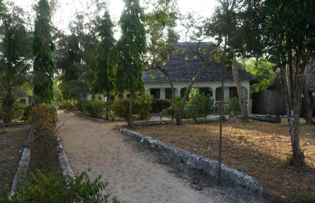 фотографии отеля The Nungwi Inn изображение №11