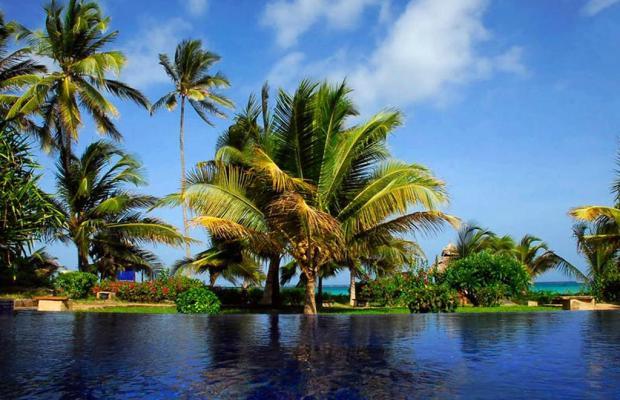 фотографии The Palms изображение №12