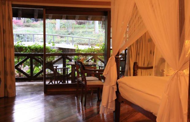 фотографии отеля Safari Park Hotel & Casino изображение №19