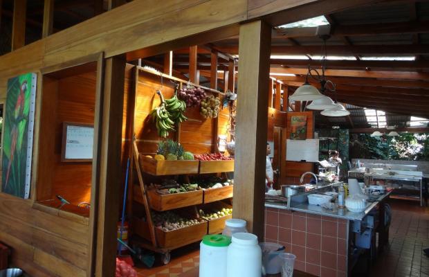 фото Aguila de Osa Inn изображение №18