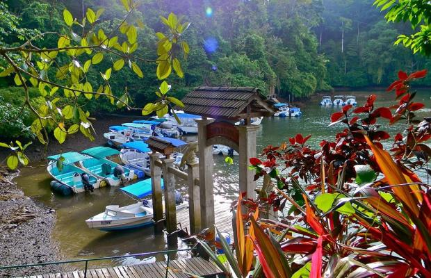 фотографии отеля Aguila de Osa Inn изображение №7