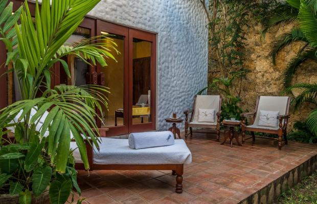 фотографии отеля Serena Beach Resort & Spa изображение №15