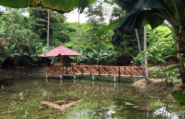 фото Esquinas Rainforest Lodge изображение №14