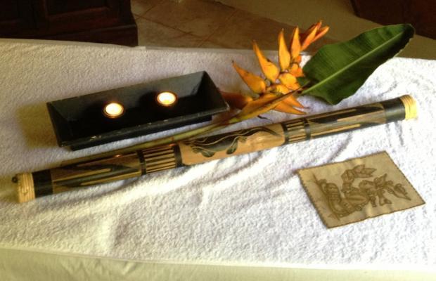 фотографии отеля Casa Corcovado Jungle Lodge изображение №7