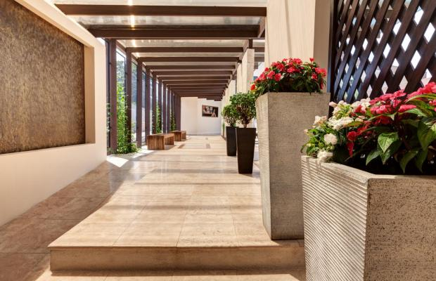 фото отеля Colaye San Jose изображение №13