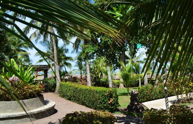 фотографии Hotel Pochote Grande изображение №4