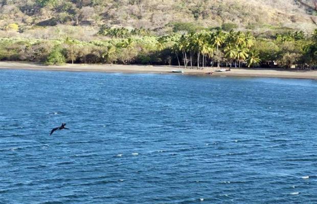 фото Vista Bahia Beach Resort изображение №18