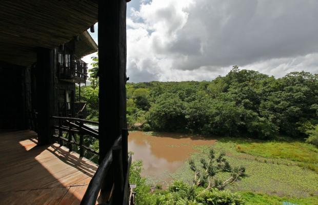 фотографии Shimba Rainforest Lodge изображение №24