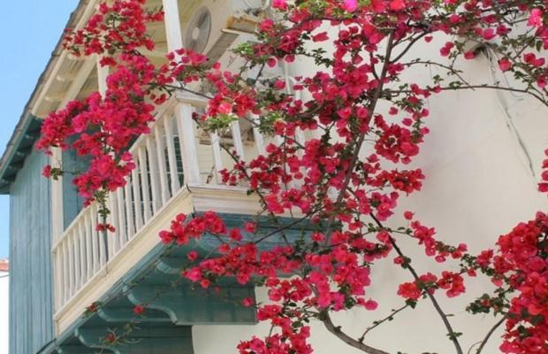 фотографии Skopelos Holidays Hotel & Spa изображение №44