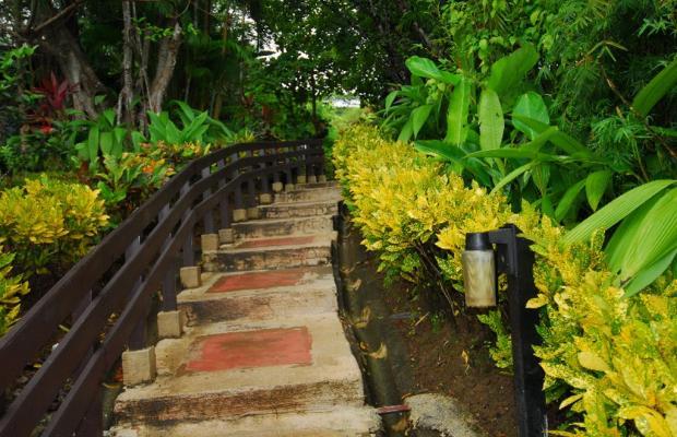 фотографии Tulemar Bungalows & Villas изображение №68