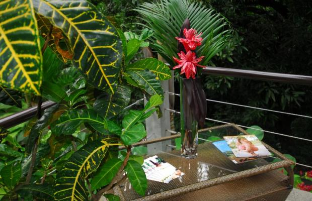 фото отеля Tulemar Bungalows & Villas изображение №61