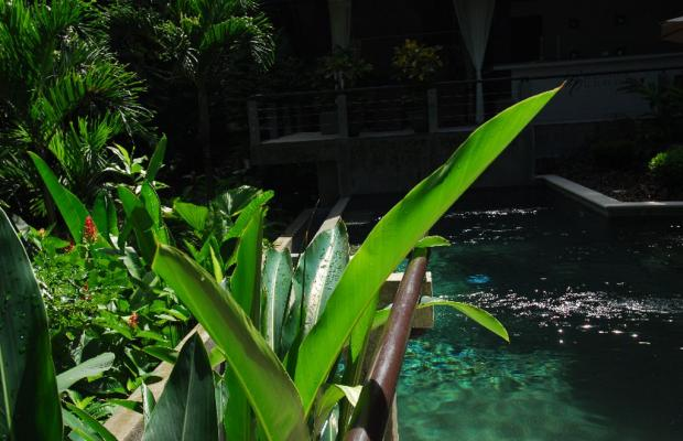 фотографии отеля Tulemar Bungalows & Villas изображение №43