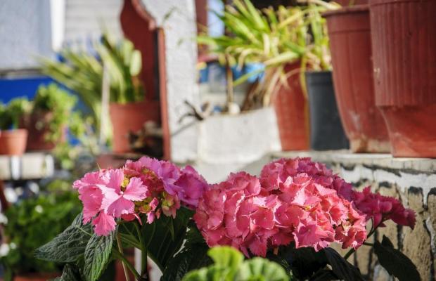 фото отеля  Christos Rooms (ex. George & Christos) изображение №13