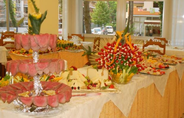 фотографии отеля Oasi hotel Milano Marittima изображение №7