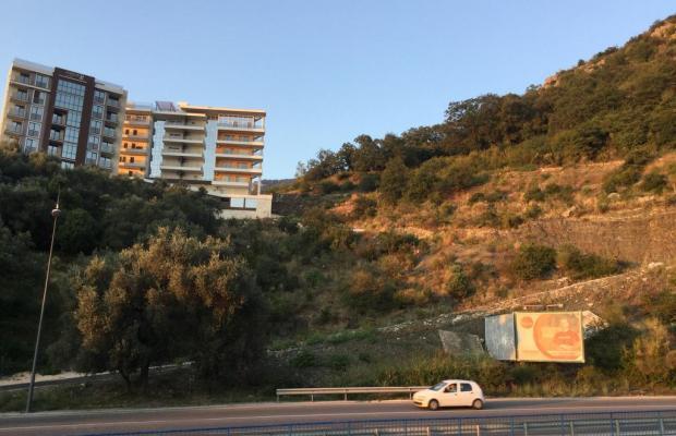 фотографии Olive Terrace изображение №4