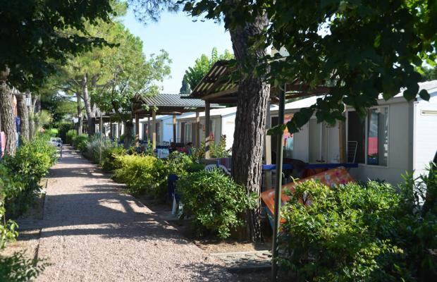 фотографии Camping Serenella изображение №28