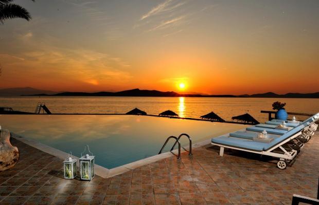 фото отеля Venus Beach изображение №1