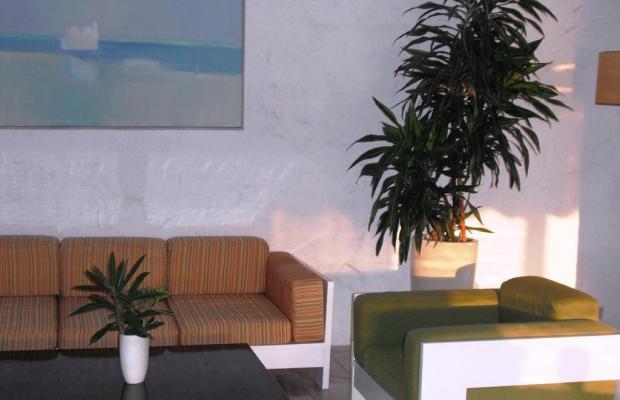 фотографии Apollo Hotel Aegina изображение №8