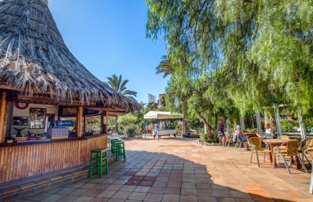 фото отеля SBH Fuerteventura Playa изображение №17