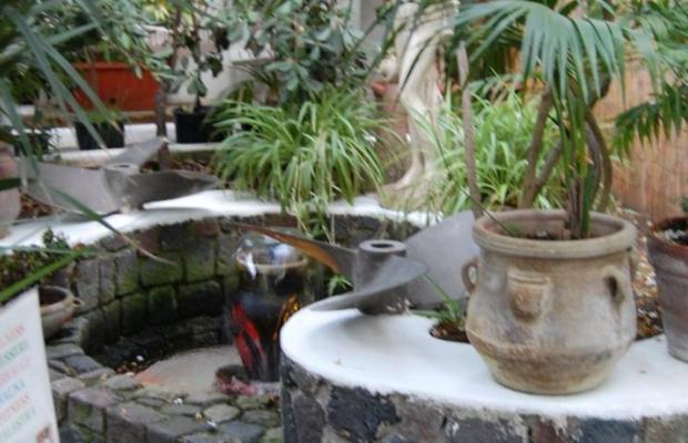 фото отеля Hotel Villa Augustus изображение №13