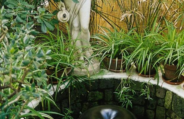 фото отеля Hotel Villa Augustus изображение №9