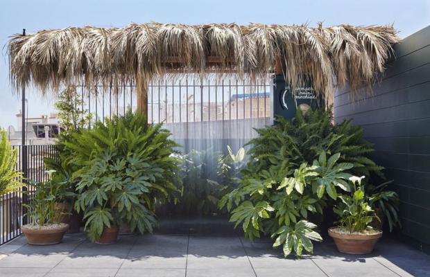 фотографии отеля Casa Camper Barcelona изображение №15