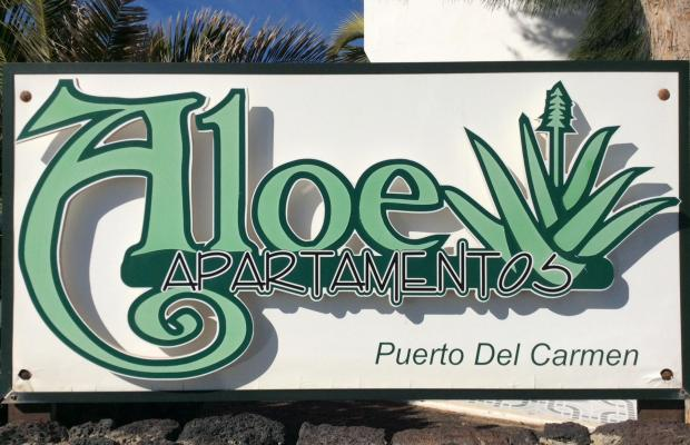 фотографии Apartamentos Aloe изображение №16