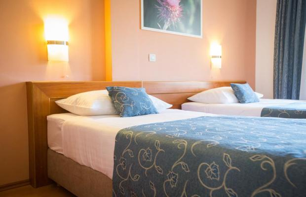 фото отеля Ivka изображение №17