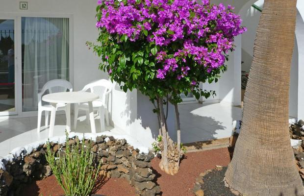 фотографии Guacimeta Lanzarote изображение №8