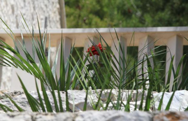 фотографии отеля Villa Ratac изображение №3