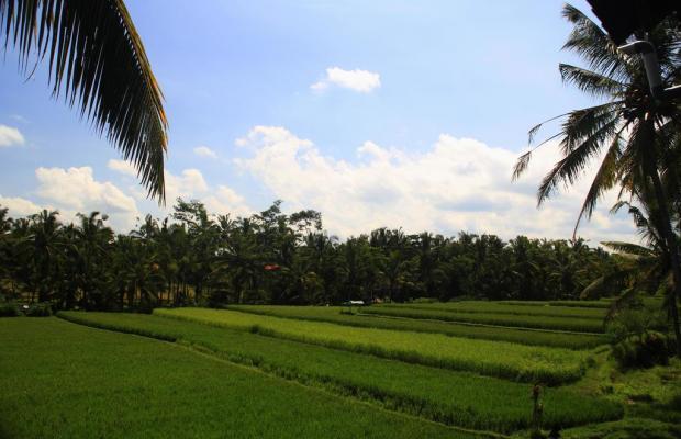 фото отеля Junjungan Ubud Hotel & Spa изображение №17