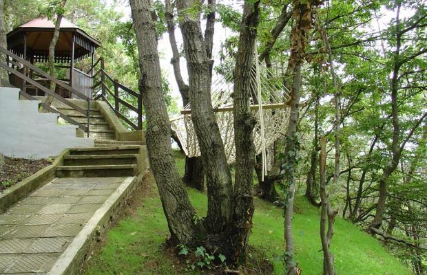 фото Villas Tajna 2 (Вилла Тайна 2) изображение №18
