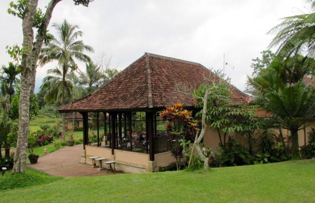 фото отеля Ijen Resort & Villas изображение №9