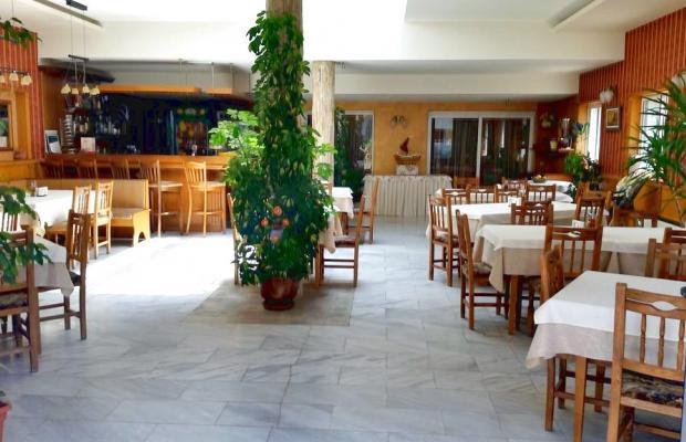 фотографии отеля Mirana Family Hotel (Мирана Фэмили Отель) изображение №3