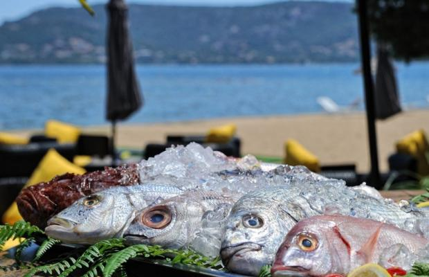 фото Hotel Marina Corsica изображение №10