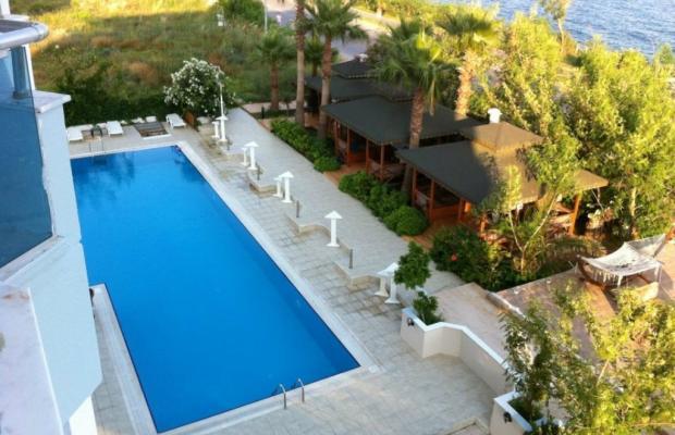 фотографии Antalya Palace изображение №12