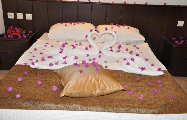 фотографии отеля Celine Hotel изображение №23
