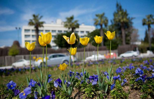 фотографии отеля Grida City изображение №63