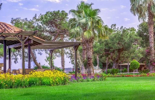 фотографии отеля Rixos Beldibi (ex. Turkiz Beldibi Resort And Spa) изображение №83