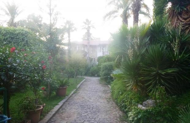 фотографии Club Gunes Garden изображение №4