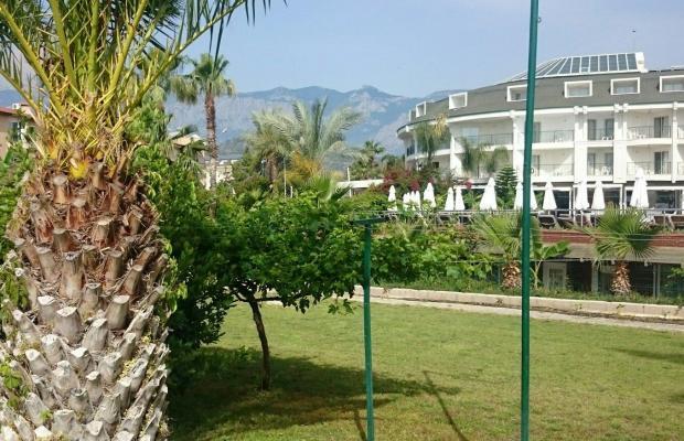 фотографии отеля Zena Resort (ex. Riva Zena) изображение №63