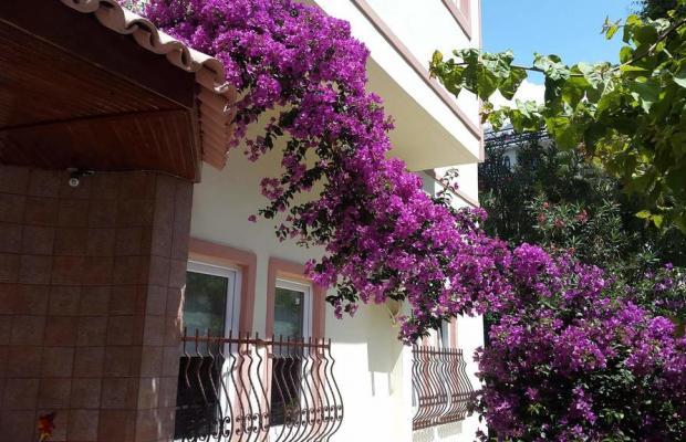 фотографии отеля Seda Apart Hotel изображение №7