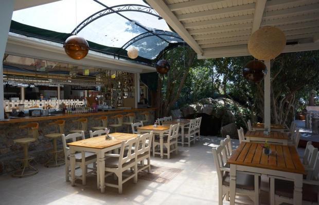 фотографии отеля Tonoz Beach изображение №15