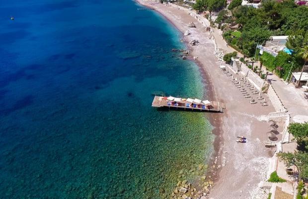 фотографии отеля Mavi Deniz изображение №35